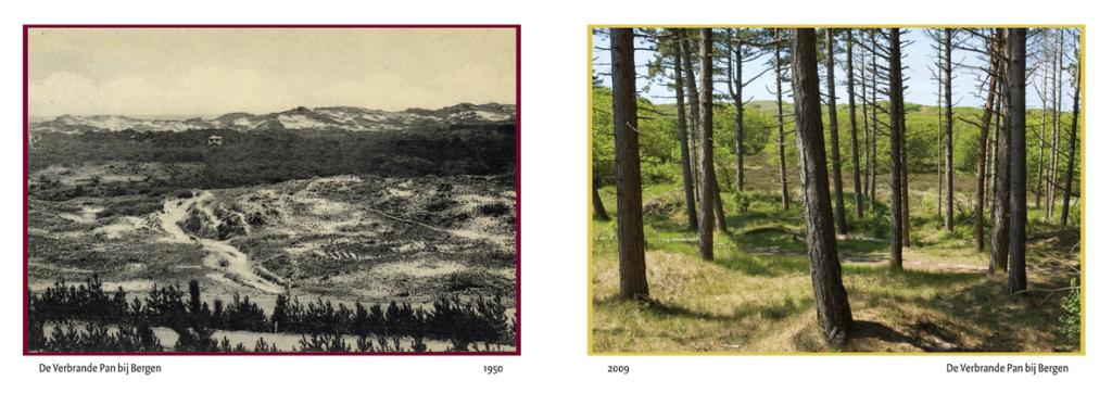 uitzicht verbarnden pan 1950 -2009
