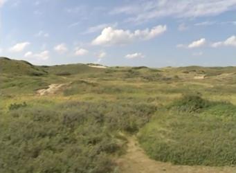 Een nieuwe start voor de Noordhollandse duinen