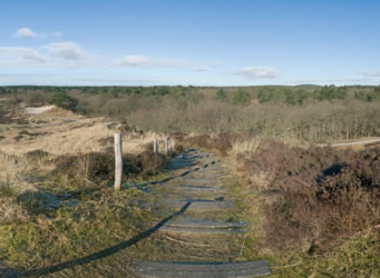 Panorama Uilenvanger