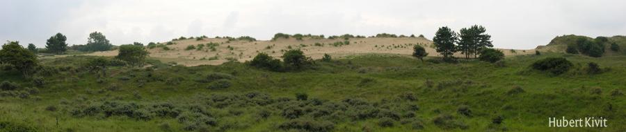 Verlaten veld (Kraansvlak) 1 - Hubert Kivit