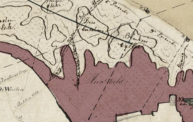 detail-mienten-200mb-pachters-texel-1876-1885-lijst-uit-NL-HlmNHA_269_1103-20121006-uit-Duinen-en-mensen-Texel-preview