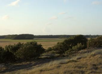 Natuur en landschap, oud en nieuw