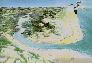 Impressie De Kerf Schoorl uit boek Bewo=gen Kustlandschap (R.Roos, 1995). Dit was de droom. de realiteit pakte anders uit.