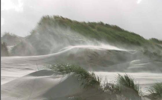 Stuivende duinen Ameland