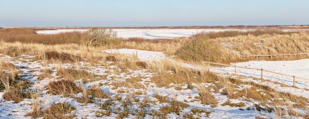 Texel in de winter