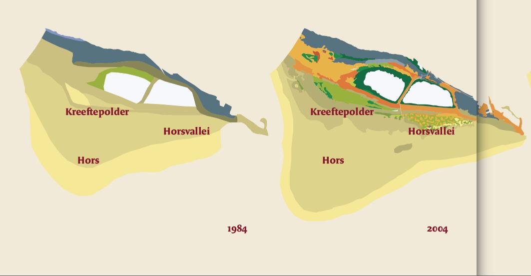 Veranderingen op de Hors 1984 - 2011