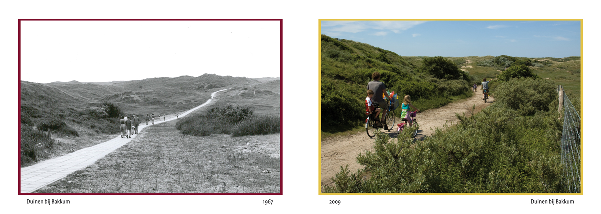 ansichtkaart voorkant bakkumse duinen