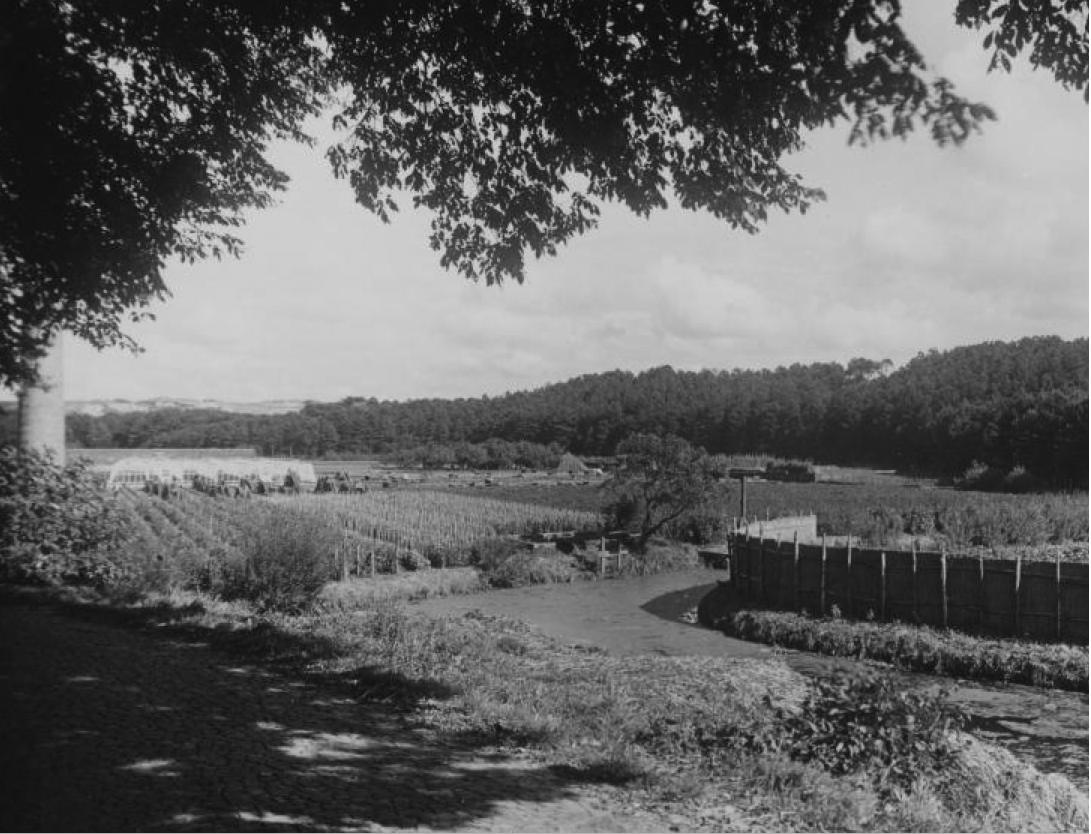 Warmoeziersland Klein Zwitserland in 1934