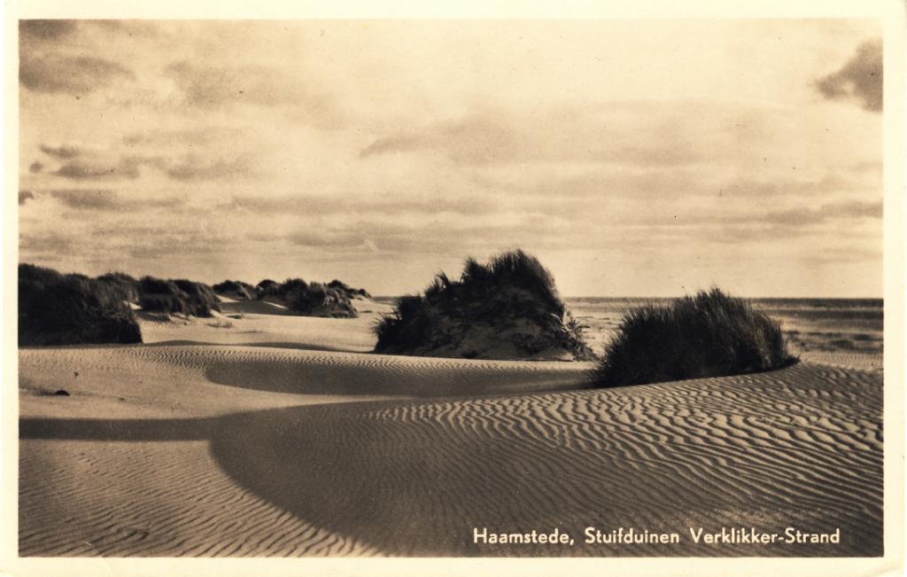 Haamstede duinen ca 1950 Collectie Dr. F. Beekman
