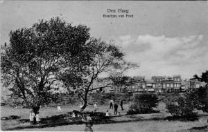 Houtrustweg hoek Laan van Poot (1925). Collectie F. Beekman