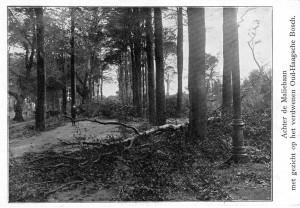 Verwoesting langs de Leidsche Straatweg door de orkaan van 1911. Collectie F. Beekman