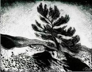 Graadt van Roggen 1923 In de duinen, houtsnede, 384 bij 491 mm