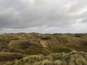 Chaotische morfologie van de duinen rond zeedorpen met o.a. lokaal oude en nieuwe stuifkuilen; foto Rienk Slings