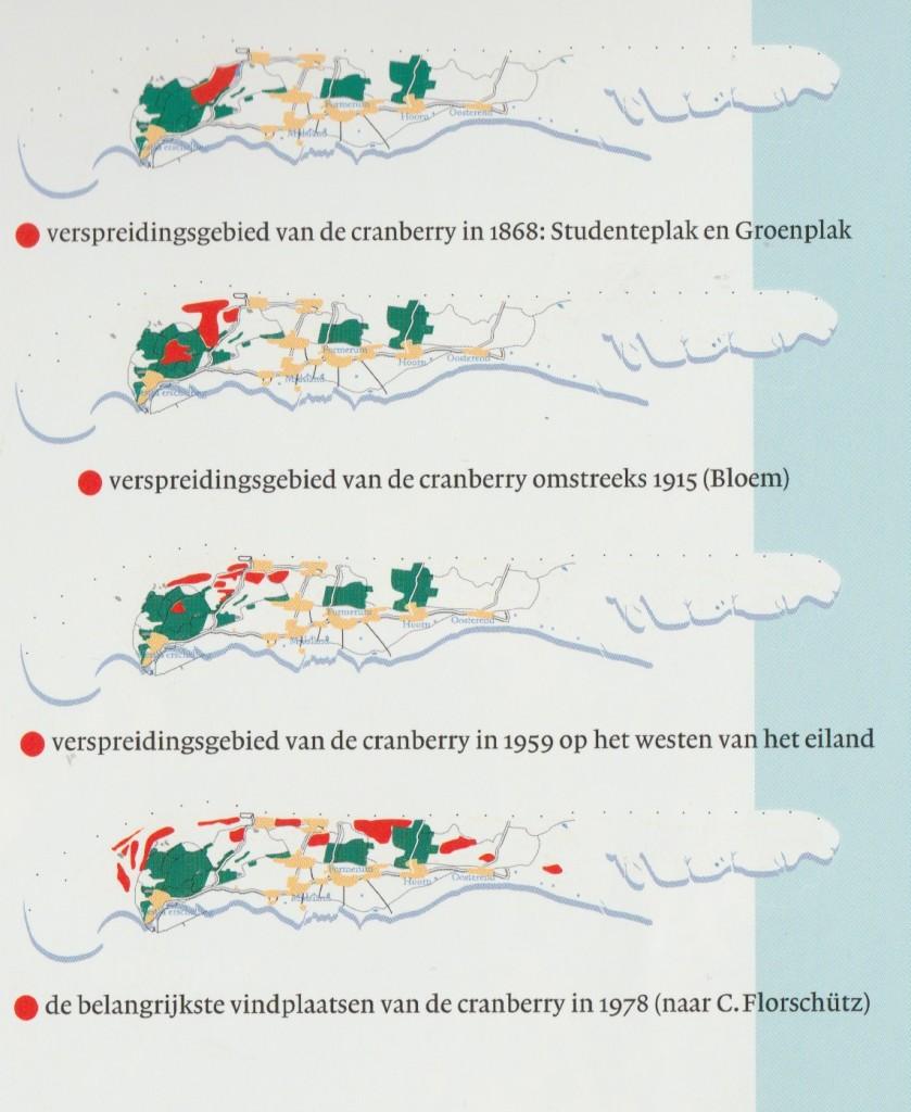 Vindplaatsen cranberries Terschelling (Arjen Kok, 2007, pag 47.)