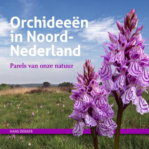 cover orchideeen noord-nederland