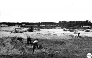 spitwerk De Wildernis augustus 1949