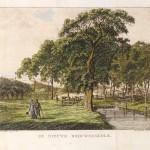 Frans Milatz: De Brouwerskolk bij Overveen, 1804