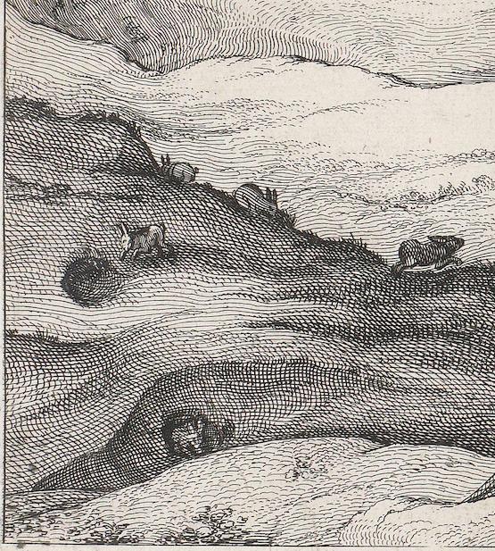 Claes Jansz Visscher Gezicht op Egmond aan Zee, 1615, ets en droge naald, 32,7 bij 57,9 Amsterdam Rijksmuseum inv.nr. RP-P-OB-80.803 detail konijnen en holen