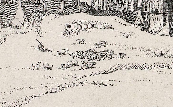 Claes Jansz Visscher Gezicht op Egmond aan Zee, 1615, ets en droge naald, 32,7 bij 57,9 Amsterdam Rijksmuseum inv.nr. RP-P-OB-80.803 detail schapen en koeien en wellicht geit