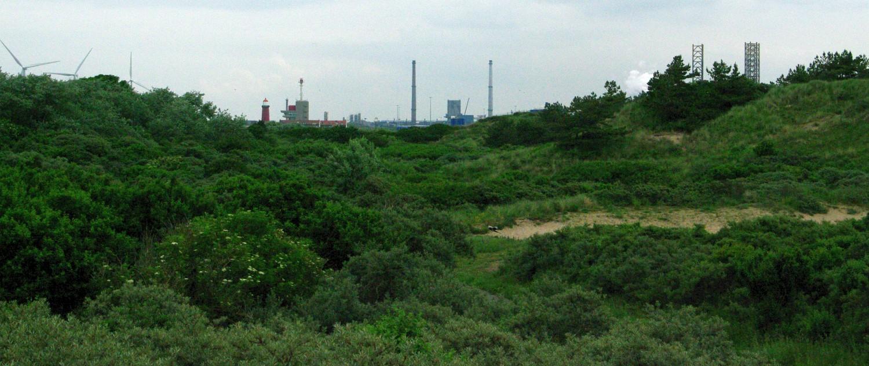 IJmuiden (2)