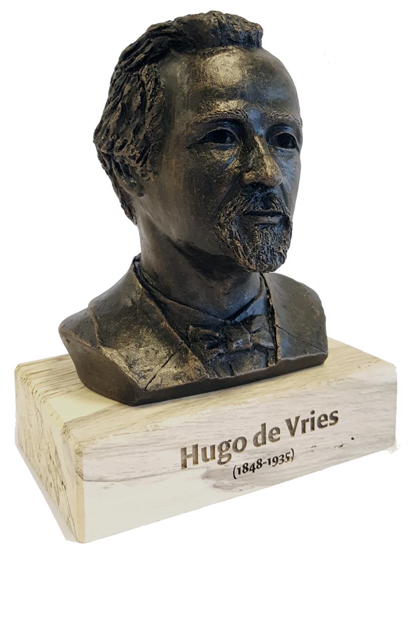 De HUGO - Beeld - ontwerp Annie van Wijngaarden